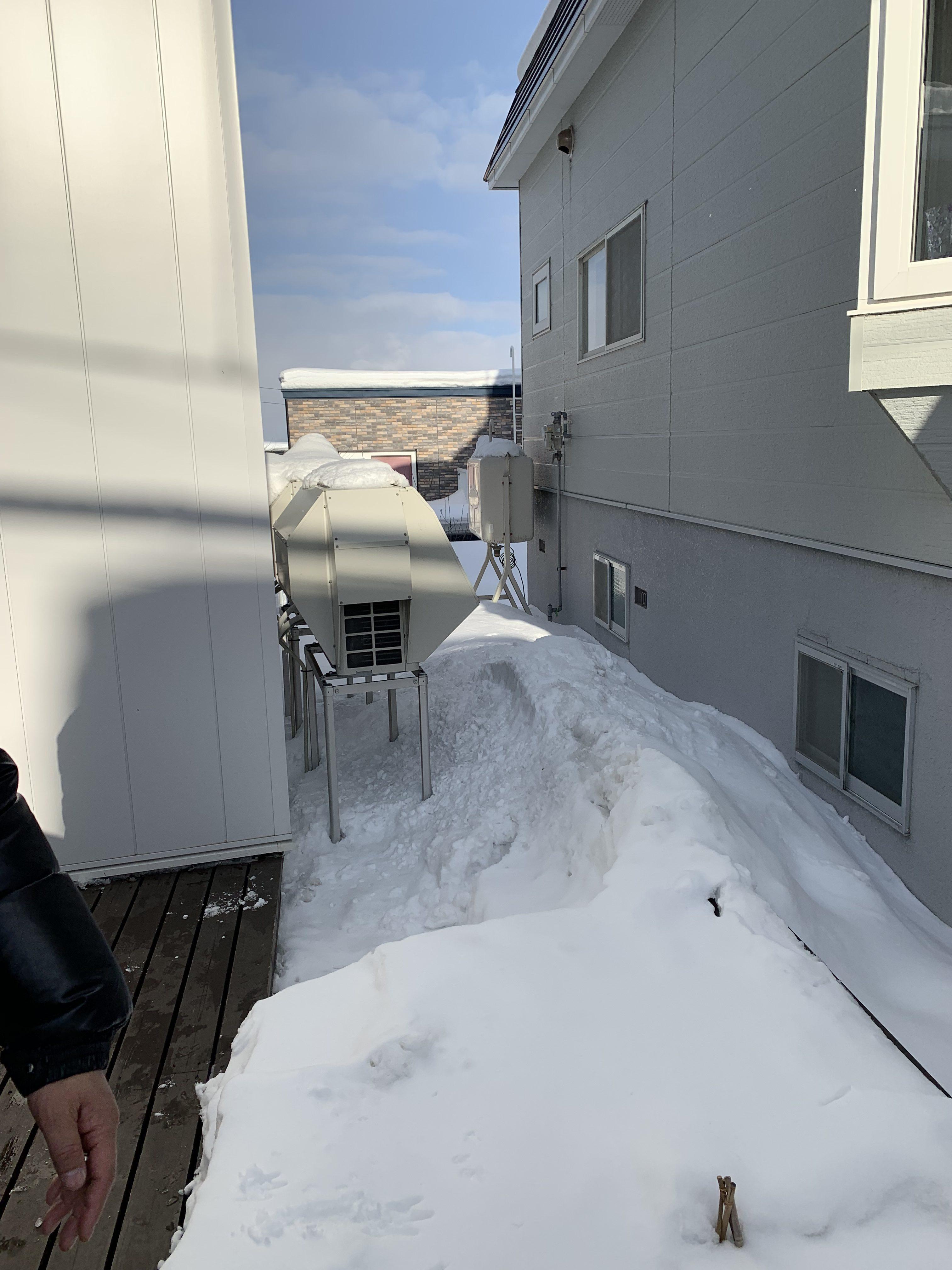 札幌20190122-1の画像