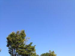 2012.10.20.jpg