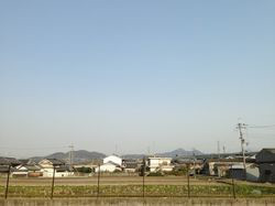 2013.3.16 1.JPG